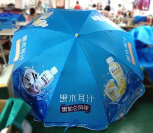 黑木耳汁太阳伞